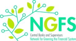 logo-ngfs2